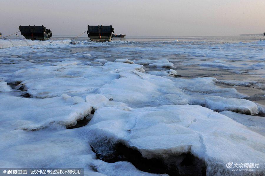 2016年1月13日,山东青岛,时值三九寒冬,受连日冷空气的影响,山东青岛胶州湾跨海大桥北部海域再次出现海冰。