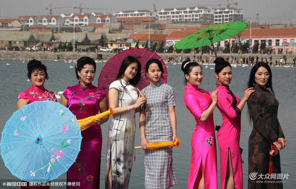 2016年3月7日,在天鹅飞处迎接国际三八妇女节的到来,让典雅古韵的旗袍和灵秀浪漫的天鹅一起飞扬。