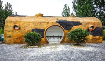 """安徽淮北现""""艺术公厕""""-形状酷似大树干.jpg"""