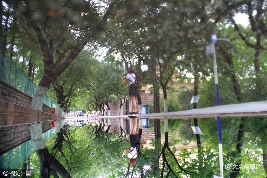 """8月22日,山东省青岛市,雨后的八大关景区内如同诗意画廊,游客与参天大树不经意间""""闯进""""积水的倒影里像是中世纪油画,秋意渐浓。"""