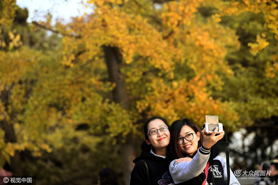 """八大关景区进入深秋赏叶季节,逐渐变色的行道树吸引了众多游客来秋游。八大关因聚集了20多个国家的建筑被称为""""万国建筑博览会"""",再加上植被绿化丰富,成为青岛著名开放式景区。"""
