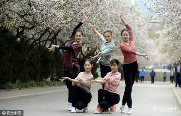 山师女大学生花海秀舞姿