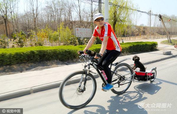 男子骑自行车带狗狗旅行
