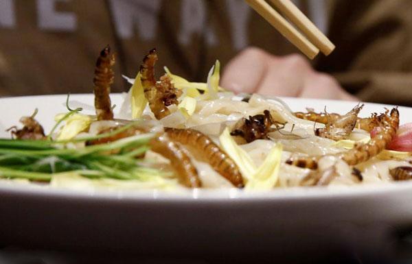 日本推出昆虫拉面 食客排长队品尝暗黑料理