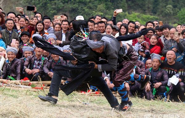 侗寨村民身着盛装 欢度传统摔跤节