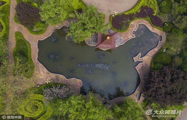 """济南一小区景观湖 外观似""""中国地图"""""""