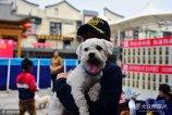 2019-03-27,在郑州某商业举办的文明养犬宣传活动中,一只一岁多点一只名叫Silence的小比熊犬,只要拿起一样东西让其闻一闻,然后藏起来,它都能找到,准确率百分之百,让现场市民大开眼界。
