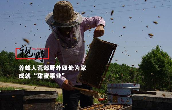图片故事:三代养蜂人四处为家 带