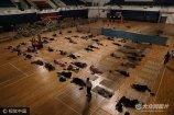 2017年9月2日,郑州大学新生报到,校方在体育馆为新生家长提供住宿处打地铺,并免费提供凉席、毛巾被、矿泉水等物品,还有大二学生彻夜轮流值班,为家长提供服务,并帮家长看守贵重物品。
