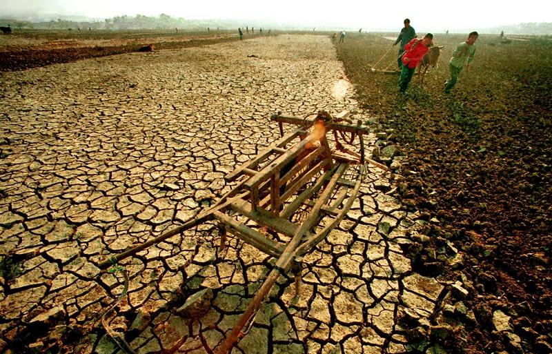 4、《抗争》1991年10月,临沂莒南遭遇严重干旱。勤劳的老区人民不等不靠,
