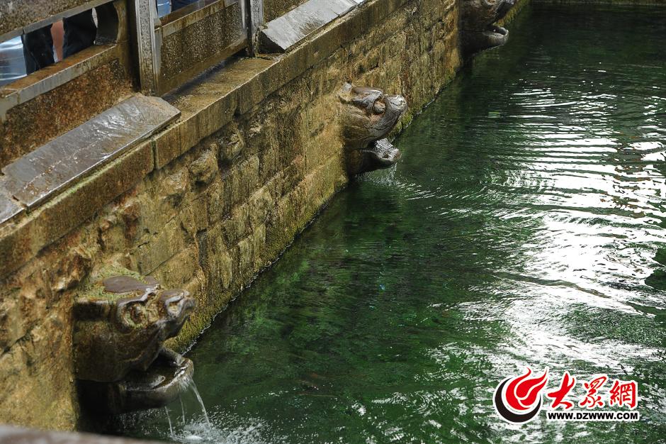 6月25日,黑虎泉的东侧两个兽头已经恢复了滴水状态。当日,黑虎泉地下水位涨至27.28米,相比24日回升了7厘米。