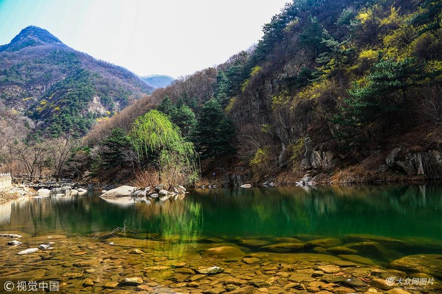 泰山彩石溪将迎盛花期