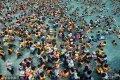 当地时间2018年8月6日,韩国龙仁市,韩国持续高温,民众聚集在加勒比海湾水上乐园玩水消暑。