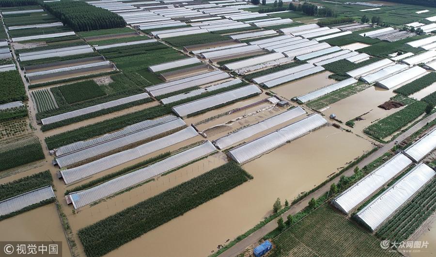 临沂部分县区遭遇暴雨洪涝灾害  农田一片汪洋