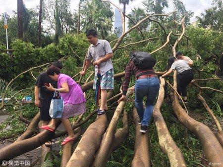 """2018年9月17日消息,深圳。台风过后的首个工作日,一大批勤劳、元气满满的深圳人,已经整理好被狂风吹乱的心情,踏上了""""一言难尽""""的上班路。"""