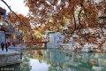 2018年11月8日,北京颐和园苏州街初冬色彩斑斓,秋天美景还在延续,水面倒映着古建筑、庭院、商铺、树木、彩叶倒影,人流如织,似一幅油画般迷人,令人流连。