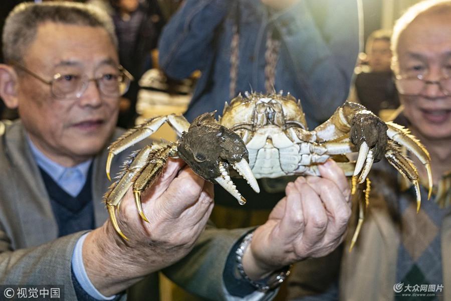 全国河蟹界C位揭晓 蟹王406.9克、蟹后349.5克