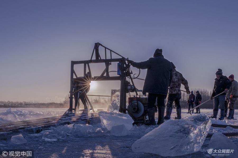 哈尔滨:采冰拾影