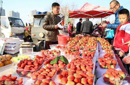 2019年1月21日,山东东营,在东营区辛店街道农村大集上,众多城乡居民围在各个年货摊点购置年货。