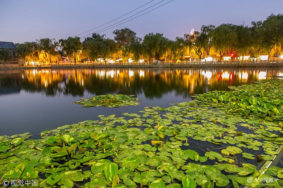 2018年6月11日,济南百花洲内的荷叶生长旺盛。夜幕降临后,百花洲夜景灯光亮起,绿油油的荷叶与夜景灯光相映成趣,璀璨的夜景迷倒众人。