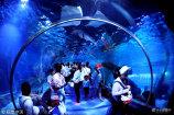 2018年7月7日,正值暑假第一个双休日,江苏连云港市海底世界迎来了许多学生游客。作者:王春/视觉中国