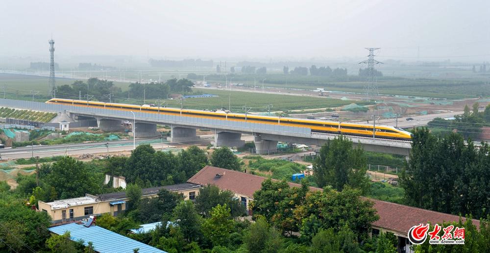 2018年8月9日上午10时许,一列车身喷涂黄色标识的动检列车驶过济青高铁淄博猪龙河桥、西五路跨线桥。列车飞驰而过,宛如一条黄龙,行驶在绿毯上,薄雾中掠出印记,驶向济南方向。(1).jpg