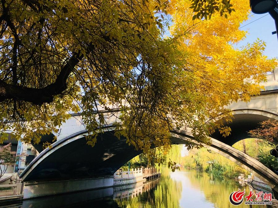 图2:有一种美,叫济南的秋天。(大众网-山东24小时记者李金珊).jpg